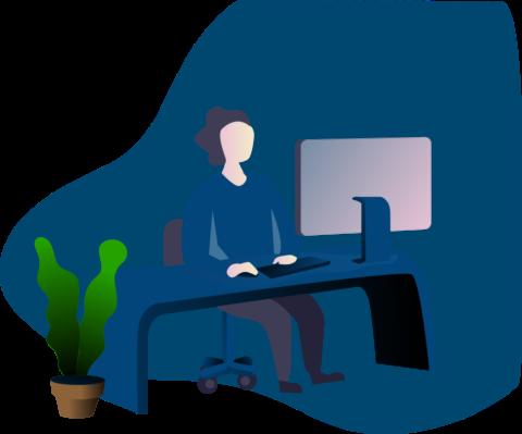 wordpress developer and wordpress web developer